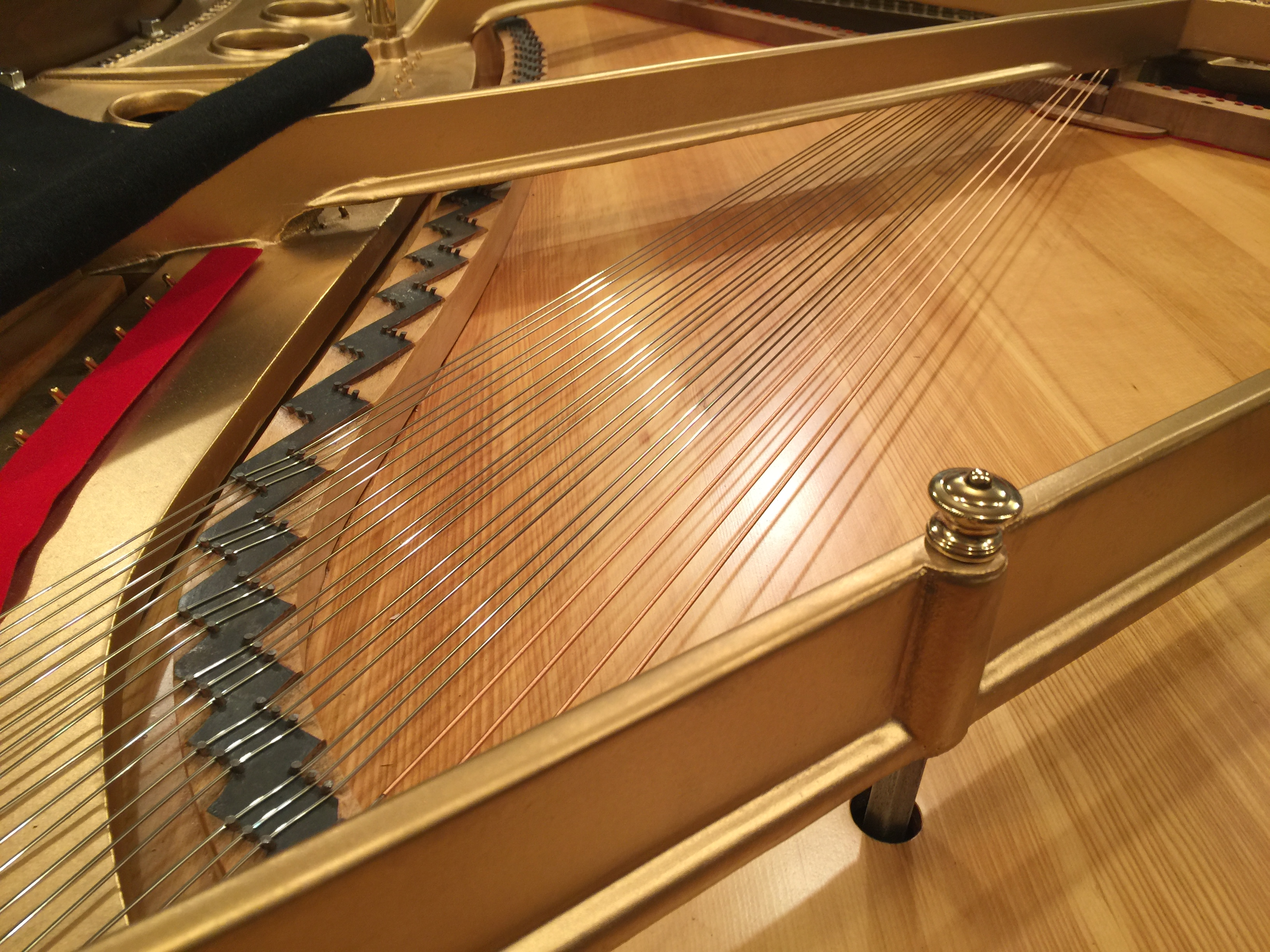 Ace Piano Tunes and Repairs Pianos in Oakland County Michigan and areas like Troy, Bloomfield, Rochester, Canton, Waterford and surrounding areas.